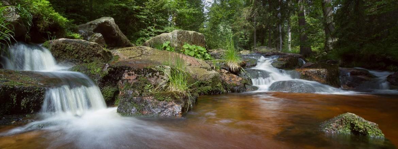 @Andreas Levi - Harz-Bilder.com